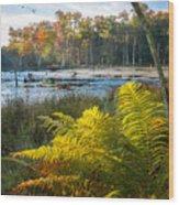 Sunrise In The Swamp Wood Print
