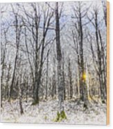 Sunrise Snow Forest Art Wood Print