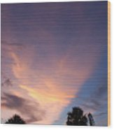 Sunset At Pine Tree Wood Print