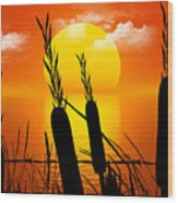Sunset Lake Wood Print by Robert Orinski