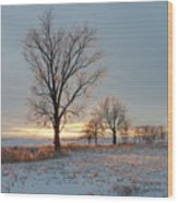 Sunset Over Icy Field Wood Print
