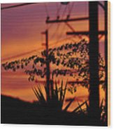 Sunset Sihouettes Wood Print