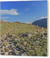 Superb Landscape In Rocky Mountain National Park Wood Print