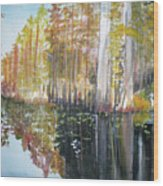 Swamp Reflection Wood Print