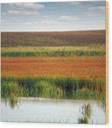 Swamp With Birds Landscape Autumn Season Wood Print