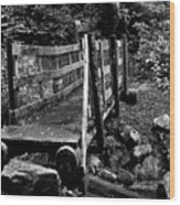 Swan Creek Footbridge Wood Print