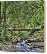 Swan Creek Park Wood Print