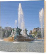 Swann Fountain - Center City Philadelphia Wood Print
