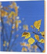 Sweet Autumn Wood Print