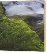 Sweet Creek Oregon 11 Wood Print