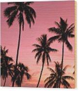 Tahiti, Papeete Wood Print