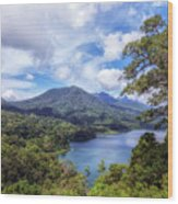 Tamblingan Lake - Bali Wood Print