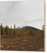 Teide  Nr 11 Wood Print