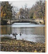 Tenney Park Wood Print