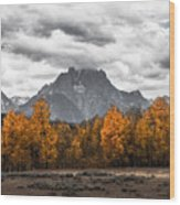 Teton Fall - Modern View Of Mt Moran In Grand Tetons Wood Print