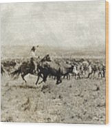 Texas: Cowboy, C1908 Wood Print