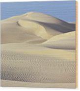 Thar Desert Dunes Wood Print
