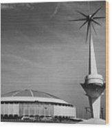 The Astrodome Aka The Eighth Wonder Wood Print by Everett