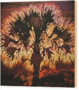 The Burning Bush Wood Print
