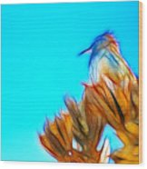 The Cactus Wren Wood Print