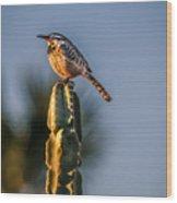 The Cactus Wren Wood Print