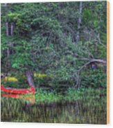 The Canoe Wood Print