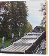 The Chessboard Hill Cascade Fountain On The Grounds Of The Peterhof Palace Wood Print