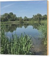 The Cotswold Water Park Wood Print
