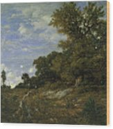The Edge Of The Woods At Monts-girard, Fontainebleau Forest Wood Print