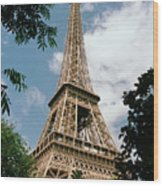 The Eiffel Tower, Paris Wood Print by Martin Diebel