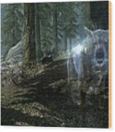 The Elder Scrolls V Skyrim Wood Print
