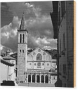 The Facade Of The Duomo With Mosaic And Eight Rose Windows And The Campanile Spoleto Umbria Italy Wood Print