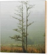 The Foggy Dew Wood Print