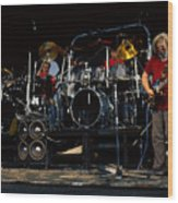 the Grateful Dead 03 Alpine Valley 1987 Wood Print