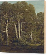 The Great Oaks Of Old Bas-breau Wood Print