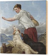 The Highland Lassie Wood Print