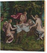 The Infancy Of Jupiter Wood Print