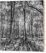 The Monochrome Forest Wood Print