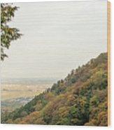 The Mountain View At The Yoro Waterfall In Gifu, Japan, November Wood Print