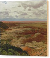 Viewpoint In The Painted Desert Wood Print