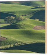 The Palouse #2 Wood Print