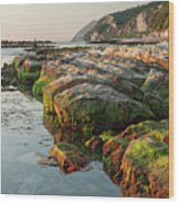 The Passetto Rocks At Sunrise, Ancona, Italy Wood Print