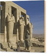 The Ramesseum Wood Print