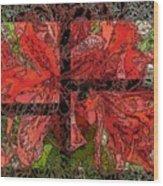 The Rhody 02 Wood Print