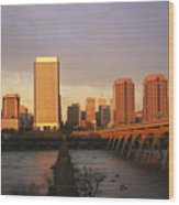 The Richmond, Virginia Skyline Wood Print by Medford Taylor