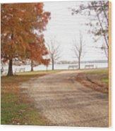 The Road Untraveled Wood Print
