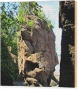 The Rocks At Hopewell Cape Wood Print