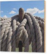 The Ropes Wood Print