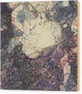 The Self-tormentor Wood Print