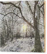 The Snow Forest Art Wood Print